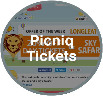 Our Projects: Picniq Tickets